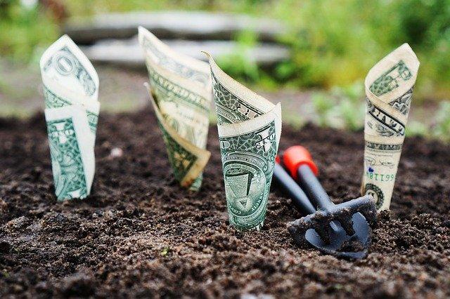 שטרי בנק צומחים מהאדמה